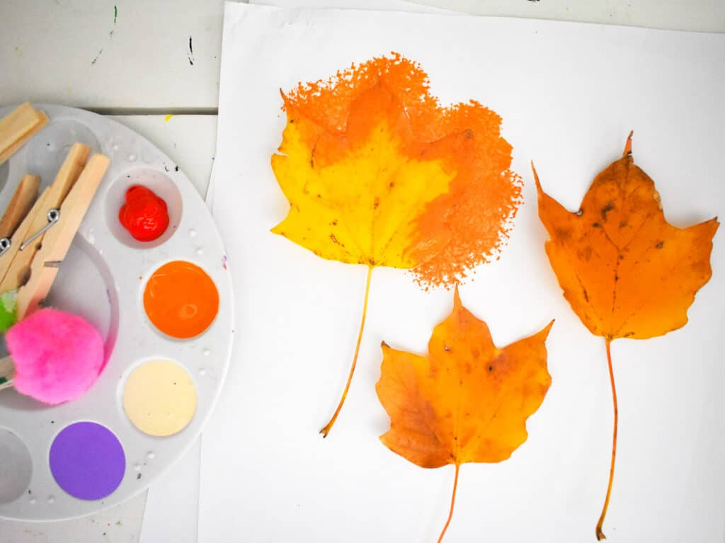 Leaves laying on white paper