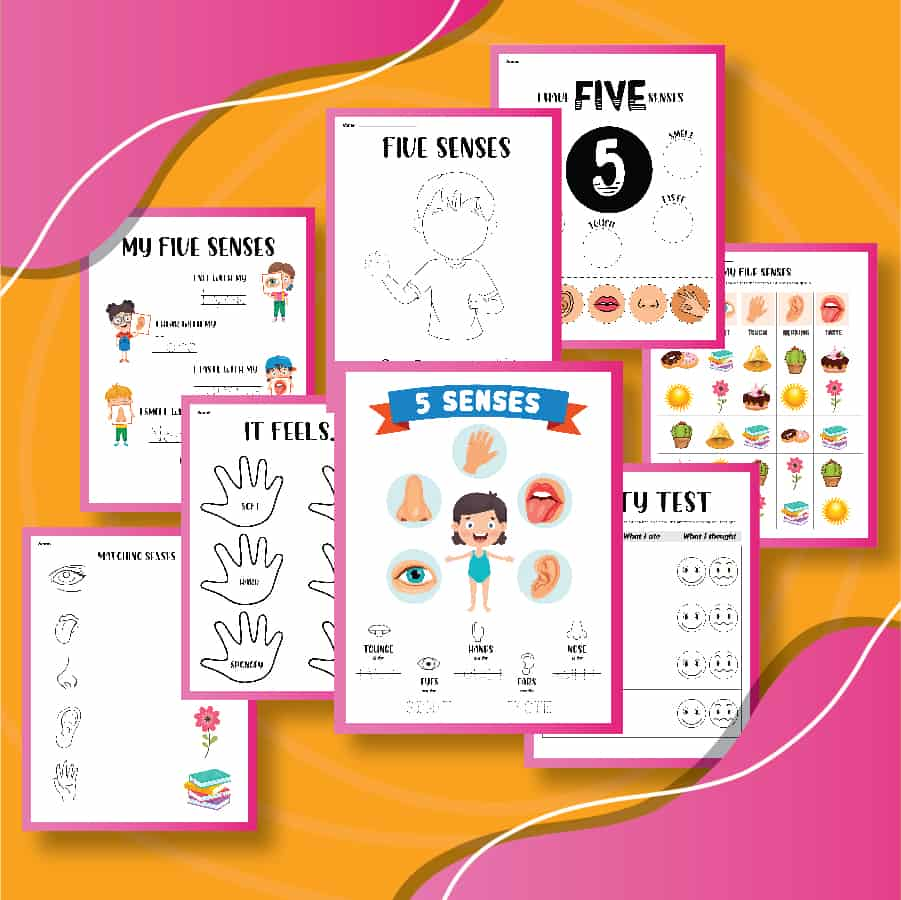 A collage of printable activities to learn about 5 senses