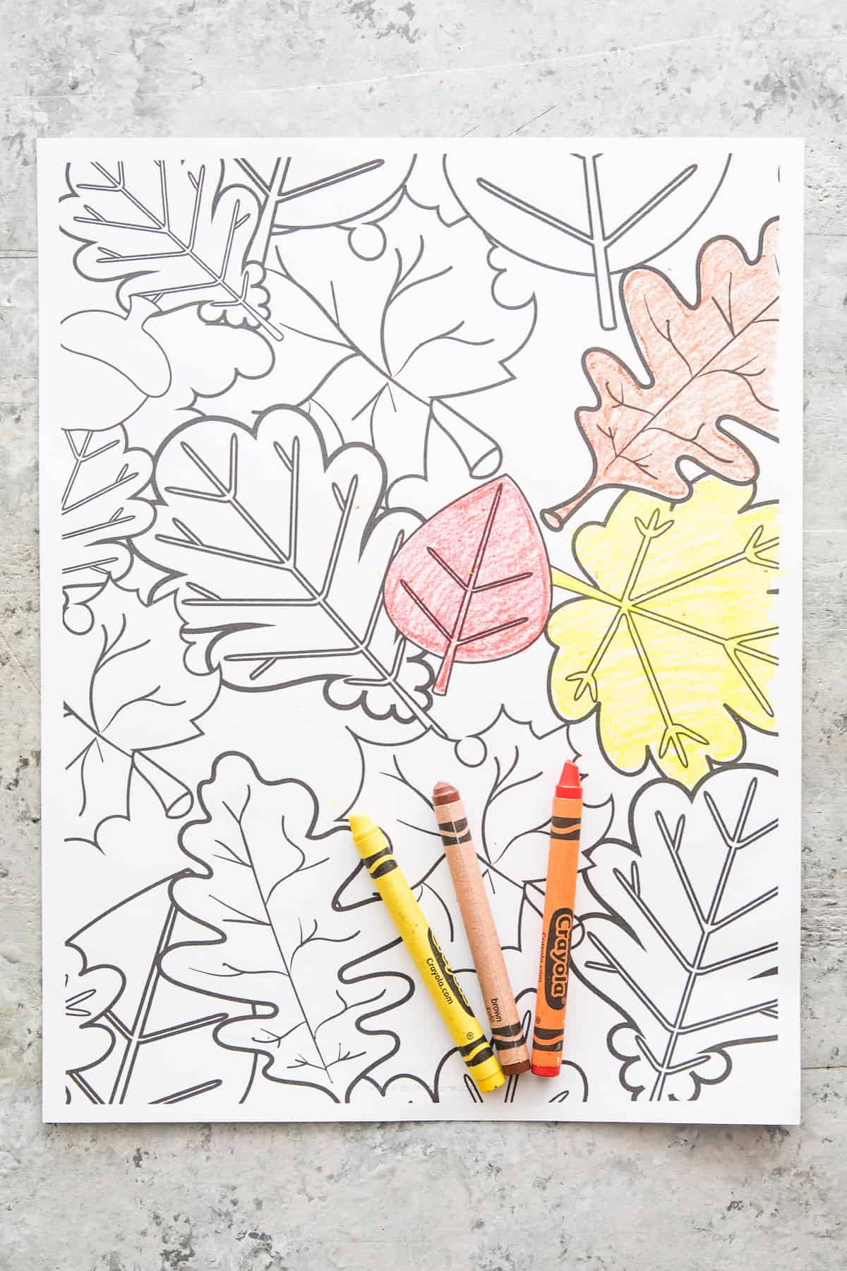 Leaf Collage Coloring Page Printout with crayons