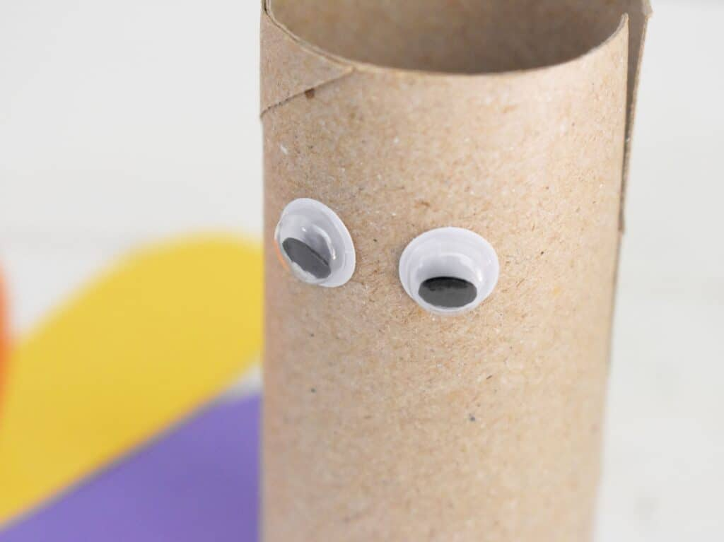 Googly eyes glued on toilet paper roll